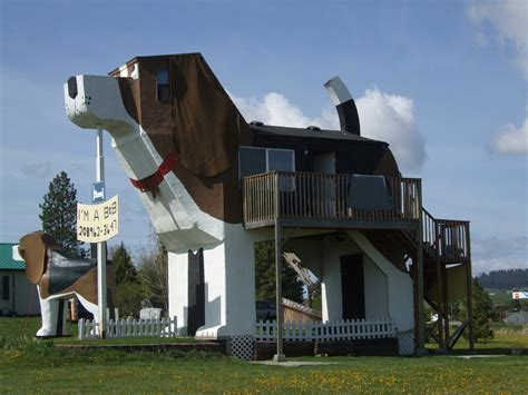 dog bark house news and events strangest roadside attractions bracketron