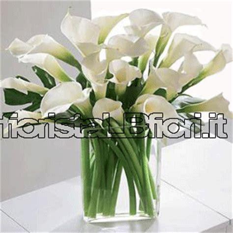 calle fiori prezzi mazzo di calle bianche consegna fiori a domicilio