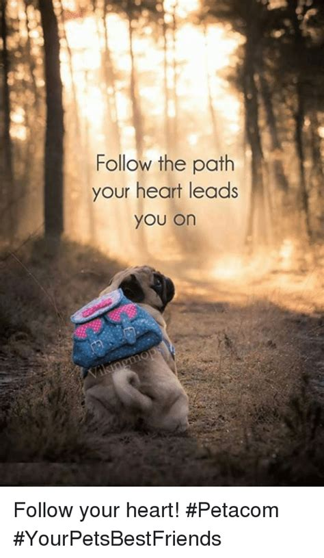 Follow Your Heart Meme - follow the path your heart leads you on follow your heart