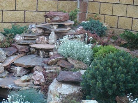 steingarten pflanzenauswahl steingarten gestalten n 252 tzliche tipps ideen und beispiele