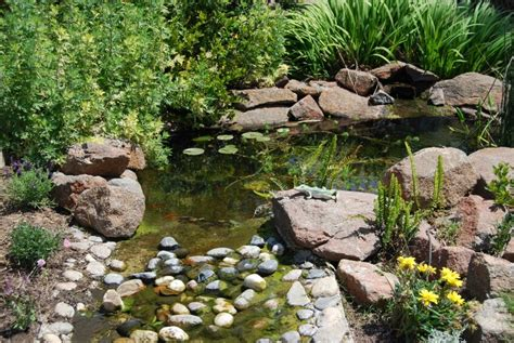 backyard stream ideas 37 backyard pond ideas designs pictures