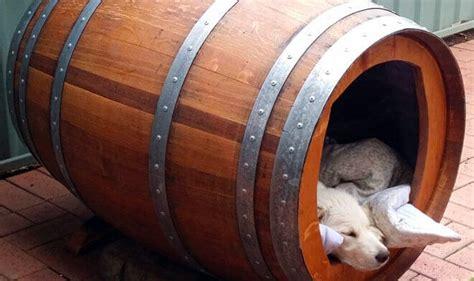 cucce da interno come costruire una cuccia per cani da interno cuccia per