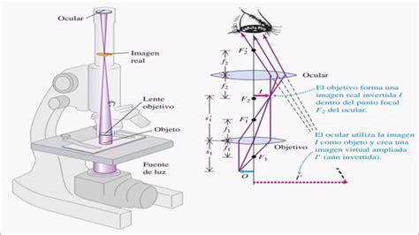 imagenes reales y virtuales en un microscopio optico microscopio y telescopio youtube