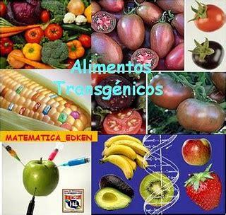 definicion de alimentos transgenicos alimentos transg 233 nicos el blog de diet 233 tica casa pi 224
