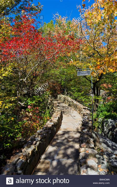 fall foliage in rock city gardens on lookout mountain