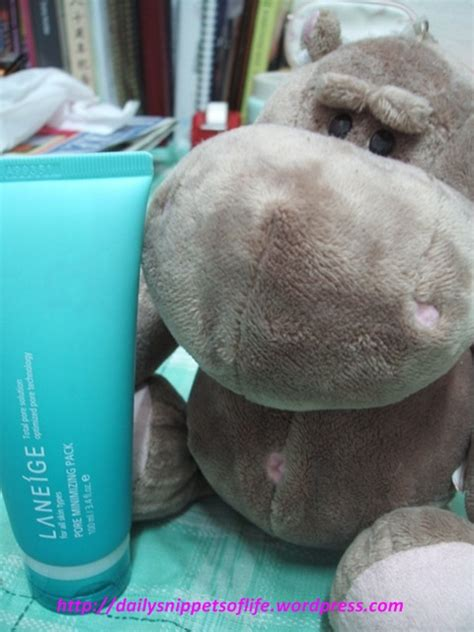 Laneige Pore Minimizing Pack review laneige pore minimizing pack daily snippets of