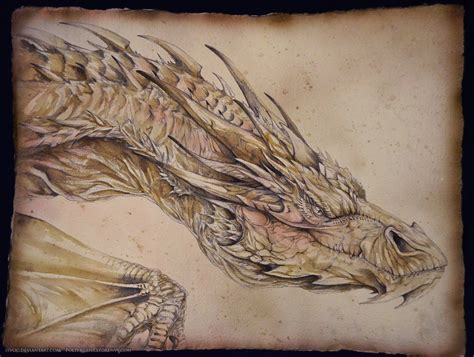 smaug portrait by isvoc on deviantart
