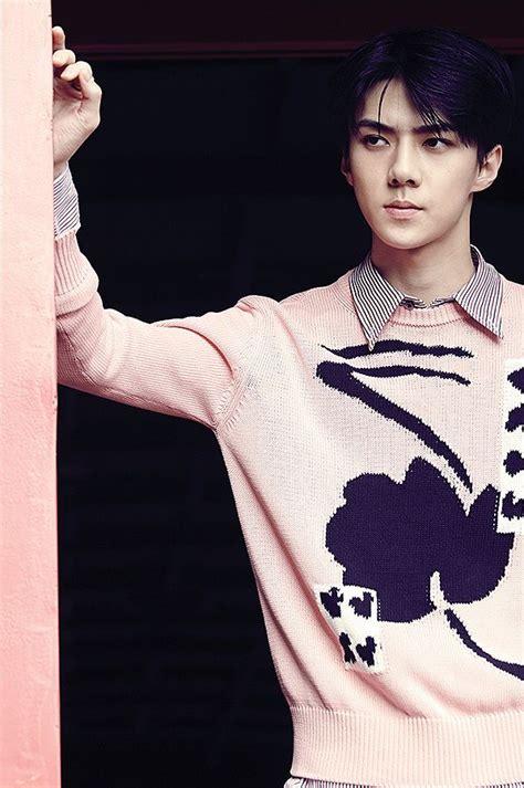 Best 20 Exo Official Ideas On Pinterest Exo Exo Exo 12 | best 20 exo official ideas on pinterest exo exo exo 12
