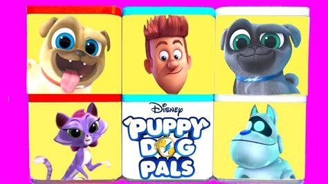puppies in disney junior puppy pals big golden book books disney jr puppy pals rolly bingo hissy arf