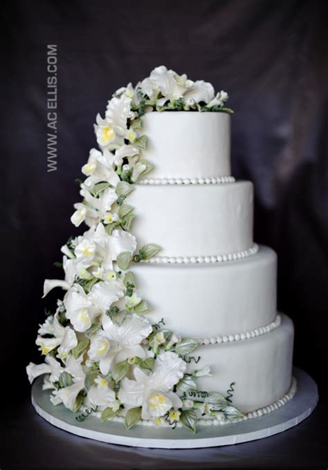 hochzeitstorte orchidee white orchid wedding cake 187 the cake sioux falls