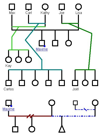 family genome template to build genograms genopro