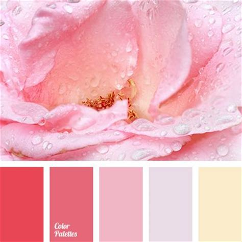 colors that match pink pastel red color palettes and matching colors on pinterest