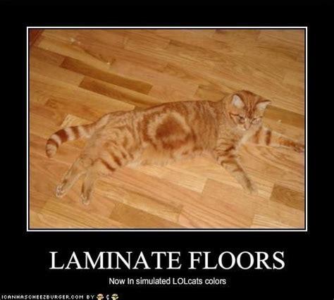Laminate Floors   Floor Fun   Pinterest   Memes