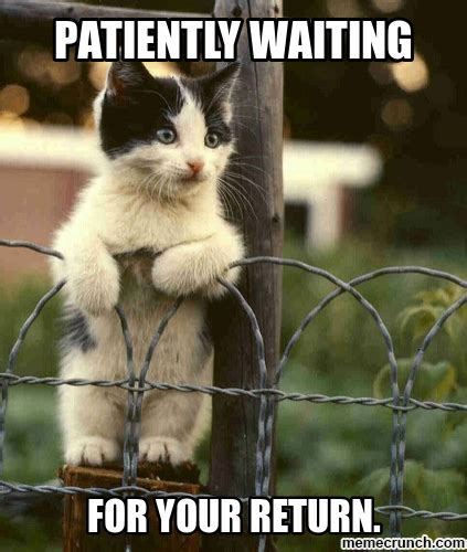 Waiting Meme by Patiently Waiting