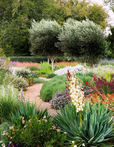 landscape designer alan fisher says quot water wise gardening doesn t mean you have to plant only