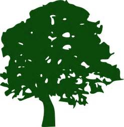 oak tree clip art at clker com vector clip art online royalty free amp public domain