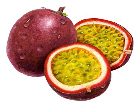 fruit meaning fruit meaning in urdu meaning in