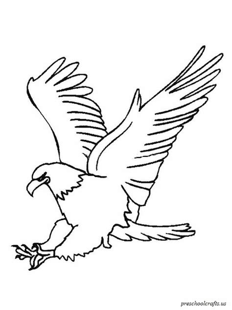 eagle coloring pages preschool download free printable eagle colouring page for preschool