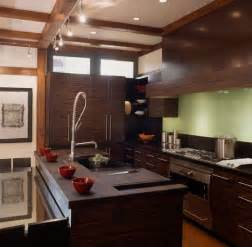 Kitchen Design With Dark Cabinets asian kitchen designs pictures and inspiration