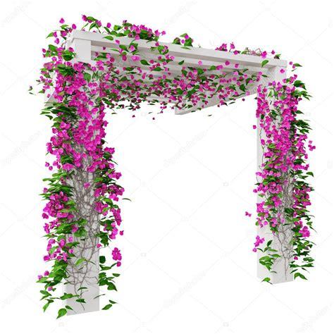 bouganville fiore bouganville rosa fiori foto stock 169 artyustudio 90503032