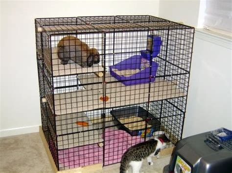 Kandang Kucing Well Cage the world s catalog of ideas