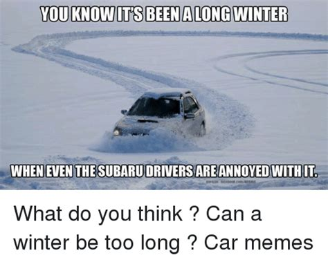 subaru winter meme 25 best memes about winter cars meme and memes