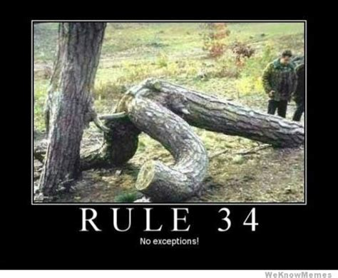 Rule 34 Memes - rule 34 meme