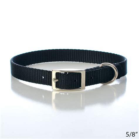 buckle collars black buckle collars petsolutions
