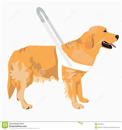 golden retriever puppy guide guide vector illustration stock vector image 82823810