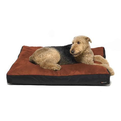 dog beds large large dog bed and extra large pet beds for dogs dog