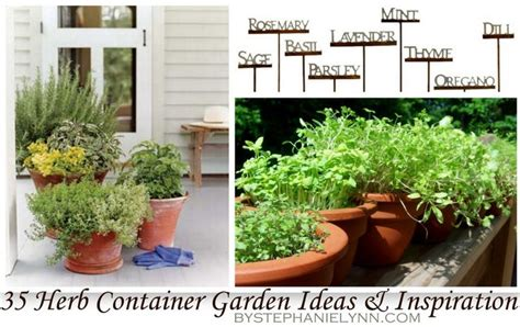 35 Herb Container Gardens Pots Planters Saturday Potted Herb Garden Ideas