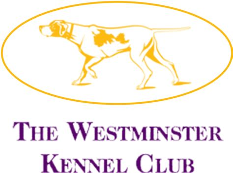 what channel is westminster show on show 101 westminster kennel club