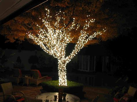 15 Best Christmas Garden Lighting Ideas 2017 Uk Stringing Lights In Trees