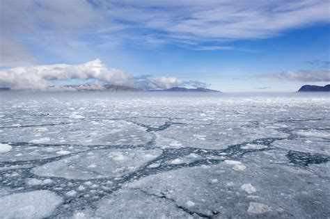 arctic sea arctic pictures posters news and on your