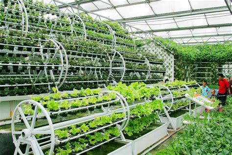 gardening hydroponics ã learn the amazing of growing fruits books aquaponics aquaponics pictures aqua botantical
