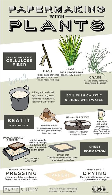 Handmade Paper Process - papermaking with plants illustrated infographic