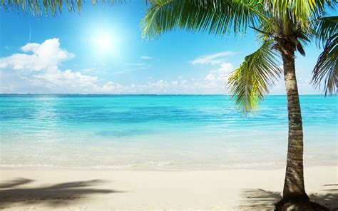 Summer Beach Scenes Wallpaper   WallpaperSafari