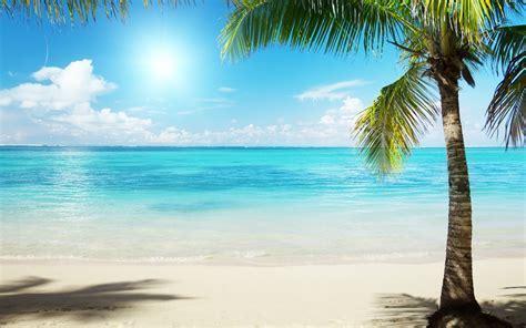 Summer Beach Scenes Wallpaper   WallpaperSafari
