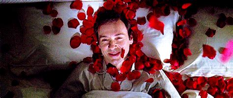 filme stream seiten american beauty american beauty sam mendes rated r 122 min a