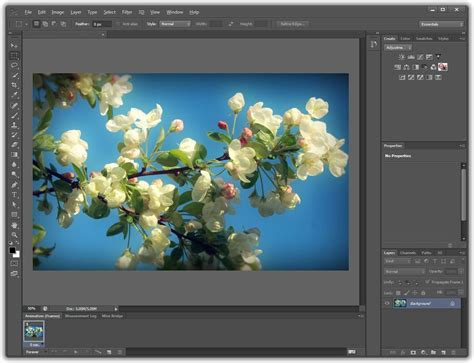 full version free photoshop software download for windows 8 photoshop cs6 free download full windows 8 heartfasten