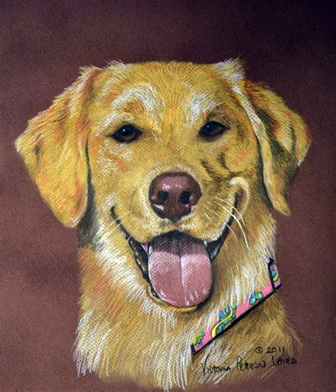 golden retriever portrait golden retriever portraits pet portraits by peterson laird