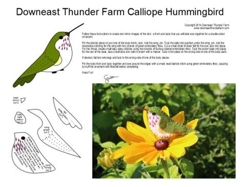 felt hummingbird pattern 1445 best birds images on pinterest