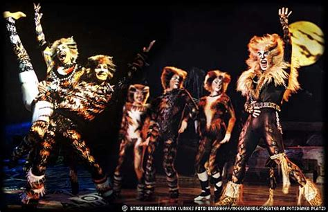cats musical images cats the musical images cats wallpaper and background