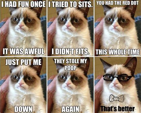Tard The Grumpy Cat Meme - blog answerbag