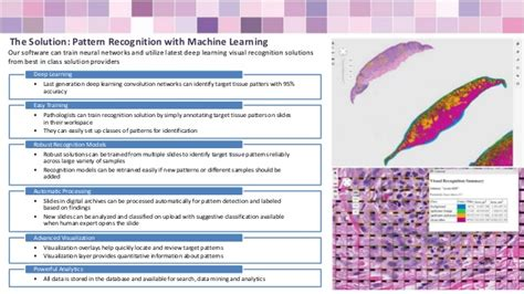 pattern analysis in histopathology free worksheets 187 pattern recognition exercises solution