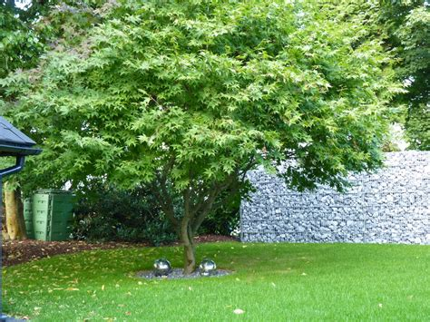 bepflanzung garten jamgo co