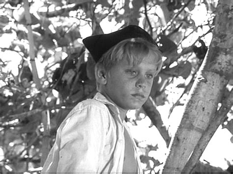 lord of the flies roger theme roger elwin rotten tomatoes