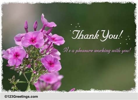 Thank You Letter To Colleagues thank you free colleagues co workers ecards greeting