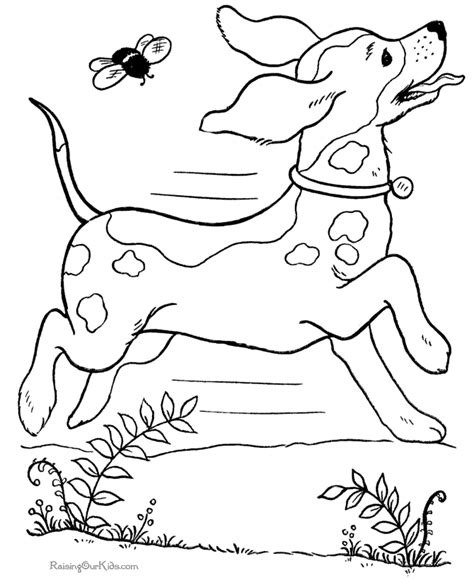 and physiology coloring book anatomy and physiology coloring pages az coloring pages