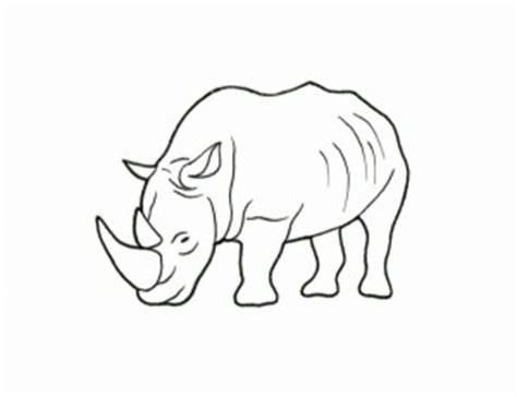 imagenes para colorear rinoceronte rinoceronte para colorear